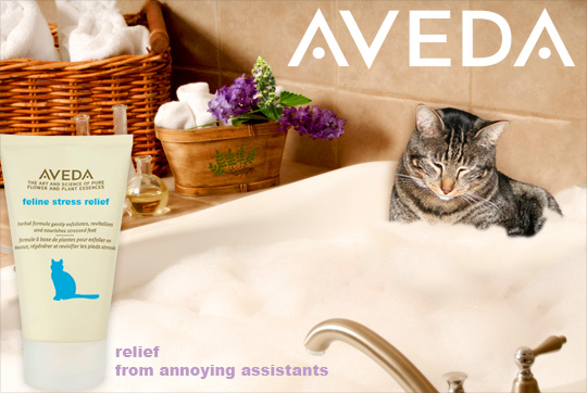 Tabs for Aveda Kitty Stress Relief