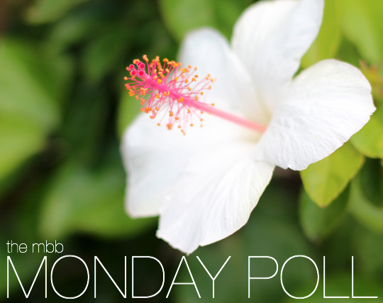 the makeup and blog monday poll