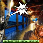 tabs-nars-liner-ninja-cat