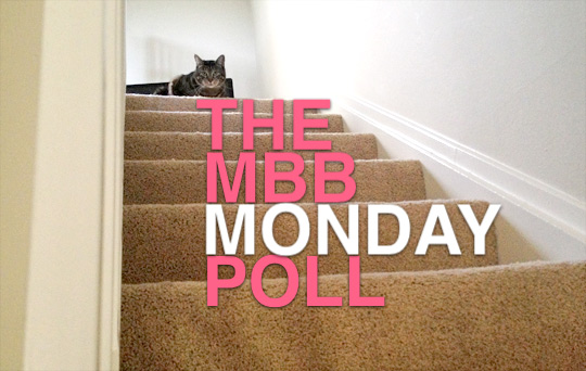 The Makeup and Beauty Blog Monday Poll