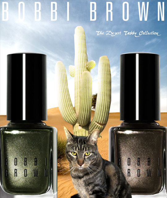 Tabs for Bobbi Brown Desert Tabby
