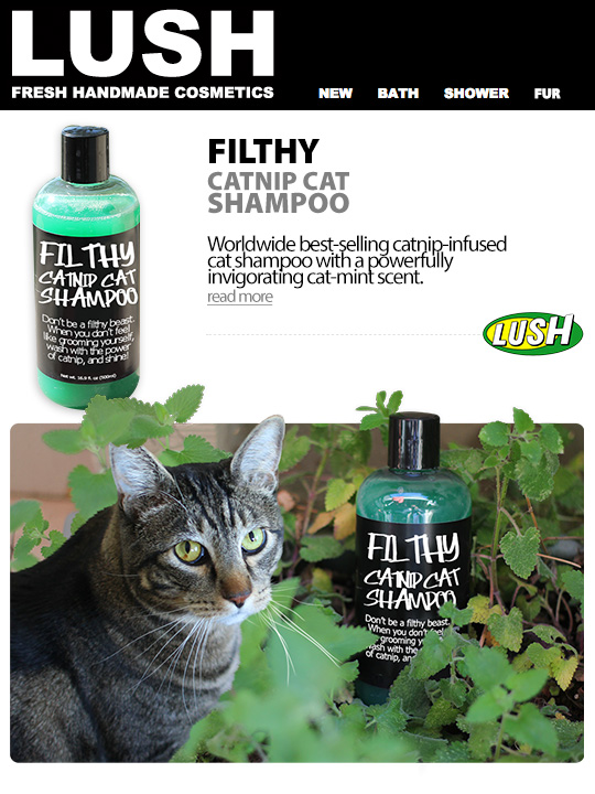 Tabs for LUSH Filthy Catnip Cat Shampoo