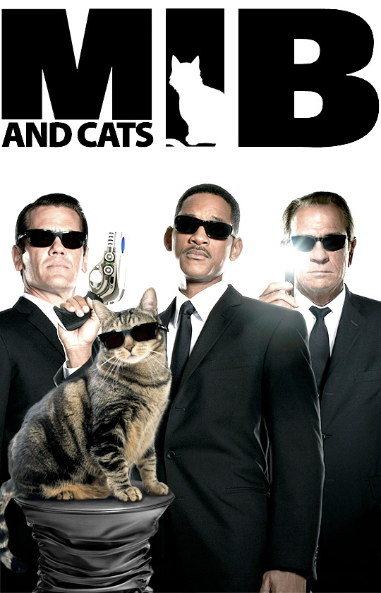 Tabs for Men and Cats in Black 3