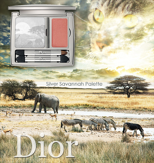 Tabs for the Dior Silver Savannah Palette