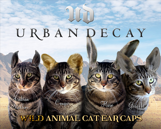Tabs for Urban Decay Wild Animal Cat Ear Caps