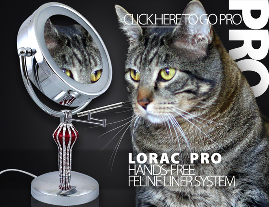 Tabs for LORAC Hands-Free Feline Liner