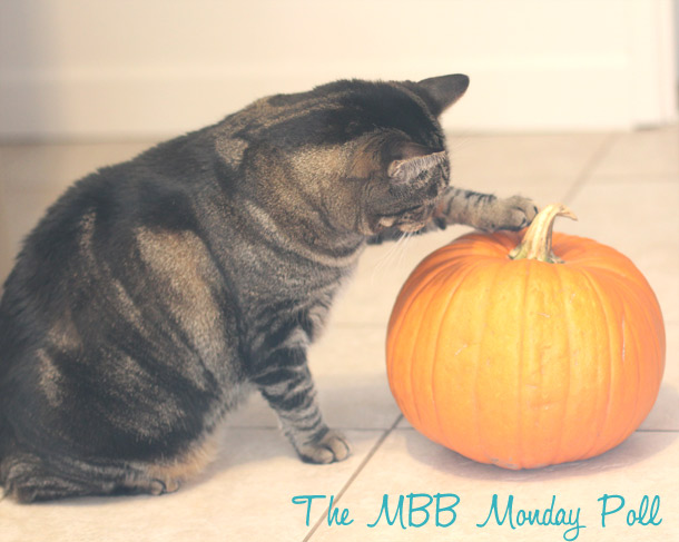 the makeup and beauty blog monday poll for october 29, 2012