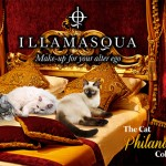 Tabs for Illamasqua Cat Philanderer