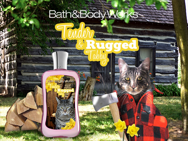 Tabs for Bath & Body Works Tender and Rugged Tabby
