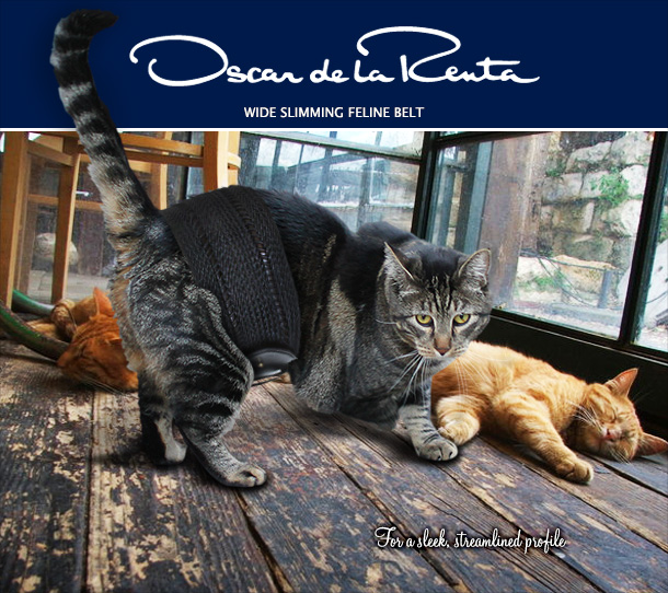 Tabs for the Oscar de la Renta Wide Slimming Cat Belt