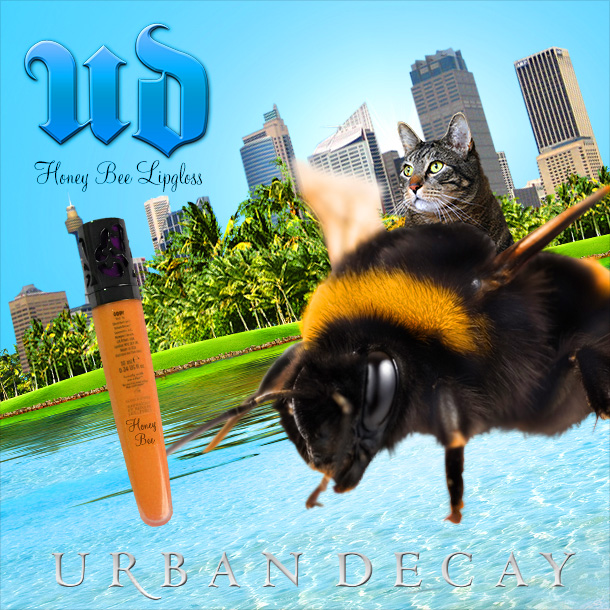 Tabs for Urban Decay Honey Bee Lipgloss