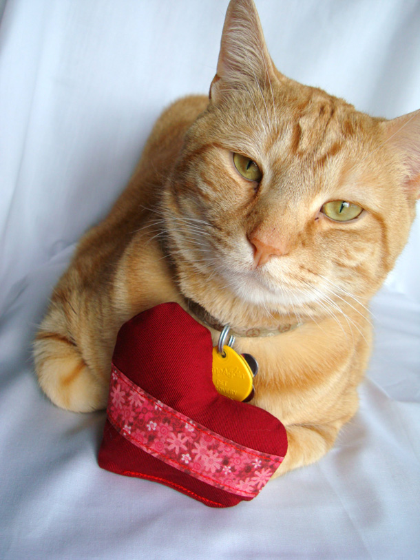 10 Catnip toy cat heart toy