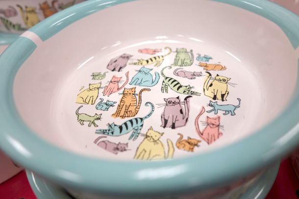 Colorful Ceramic Cat Bowl from Petco