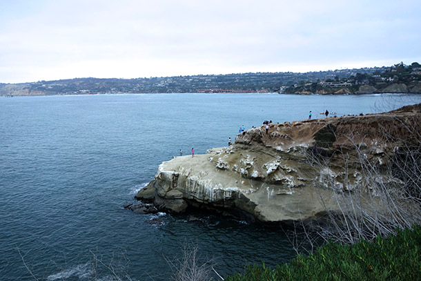 View of La Jolla cove