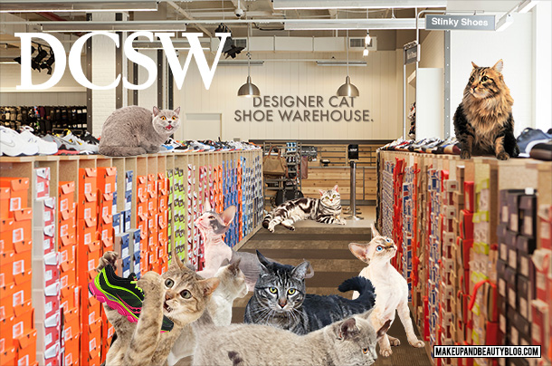 Tabs the Cat for DCSW Designer Cat Shoe Warehouse