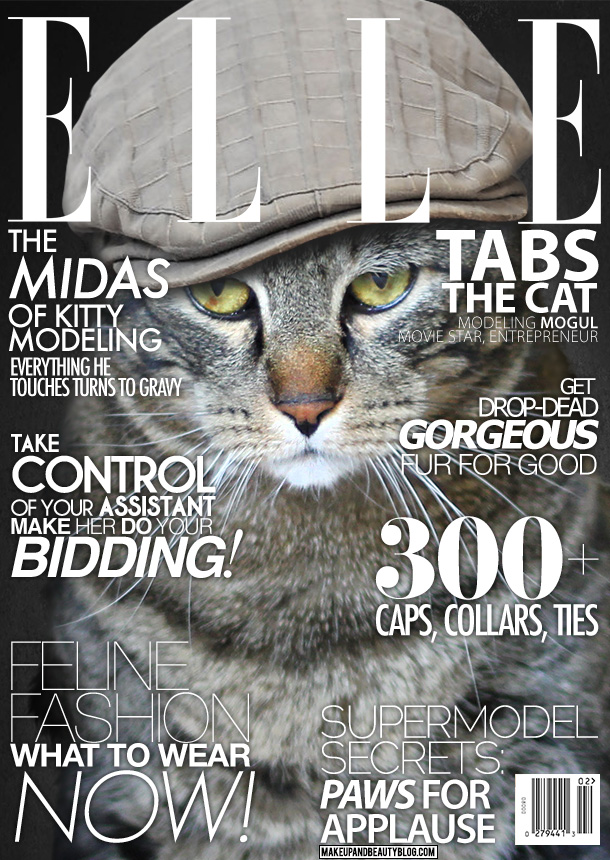 Tabs the Cat on the September Cover of Elle Magazine