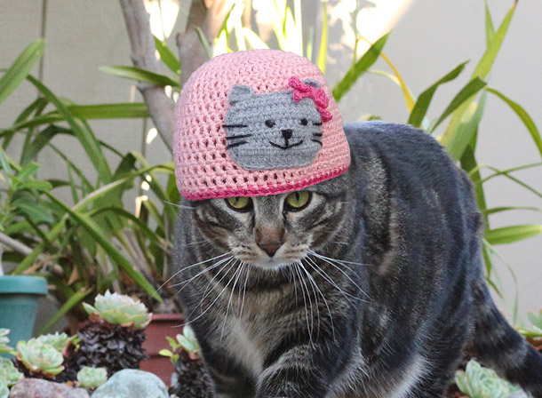 tabs-etsy-crochet-cat-hat-610