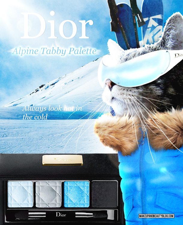 Tabs the Cat for the Dior Winter Palette