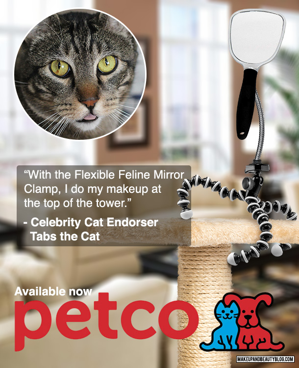 Tabs the Cat for the Petco Cat Mirror Flexible Stand