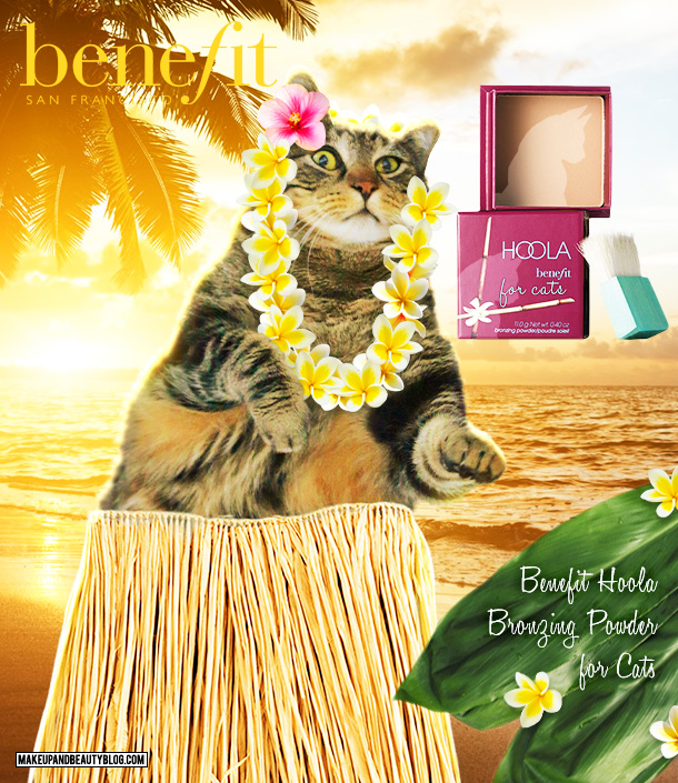 Tabs the Cat for Benefit Hoola Bronzer for Cats