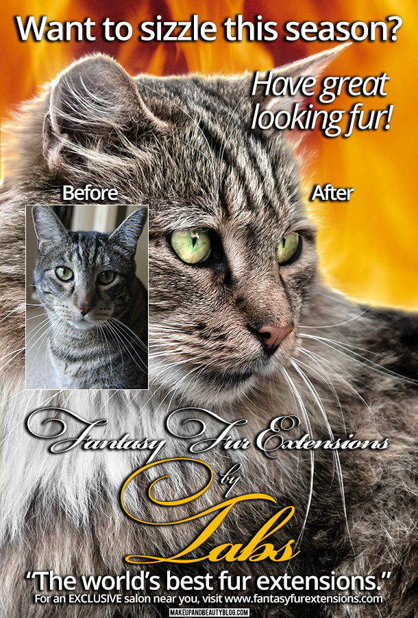 Tabs the Cat for Fantasy Fur Extensions