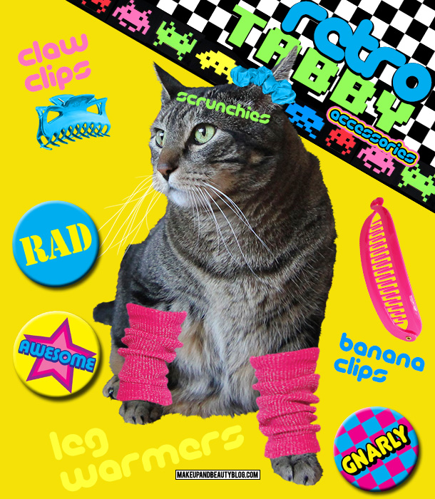 Tabs the Cat for Retro Tabby Accessories