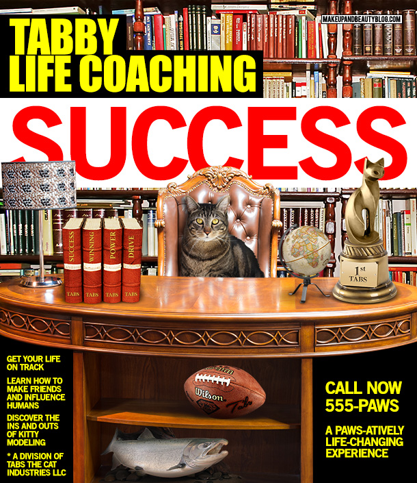 Tabs the Cat for Tabby Life Coaching