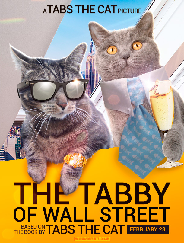 Tabs the Cat starring in The Tabby of Wall Street
