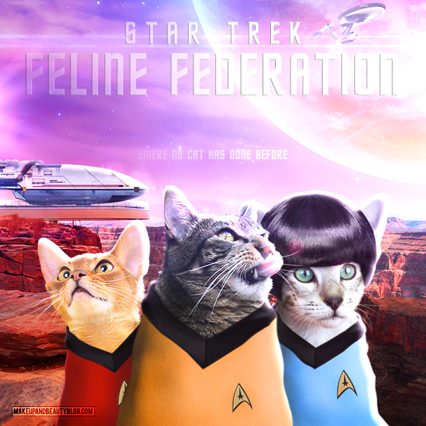 Tabs the Cat starring in Star Trek Feline Federation