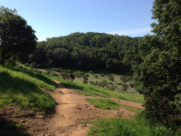 Novato Indian Valley Open Space Preserve