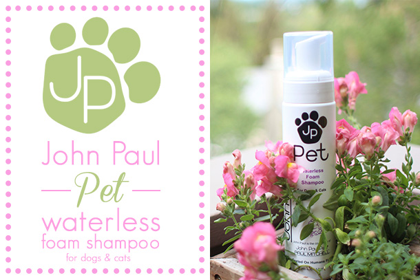 John Paul Pet Waterless Foam Shampoo Review