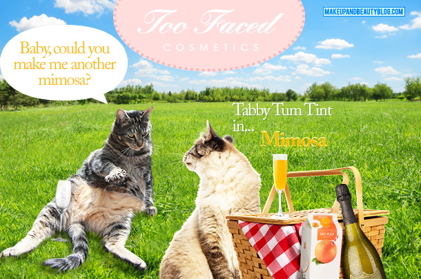 Tabs the Cat for Too Faced Tabby Tum Tint in Mimosa