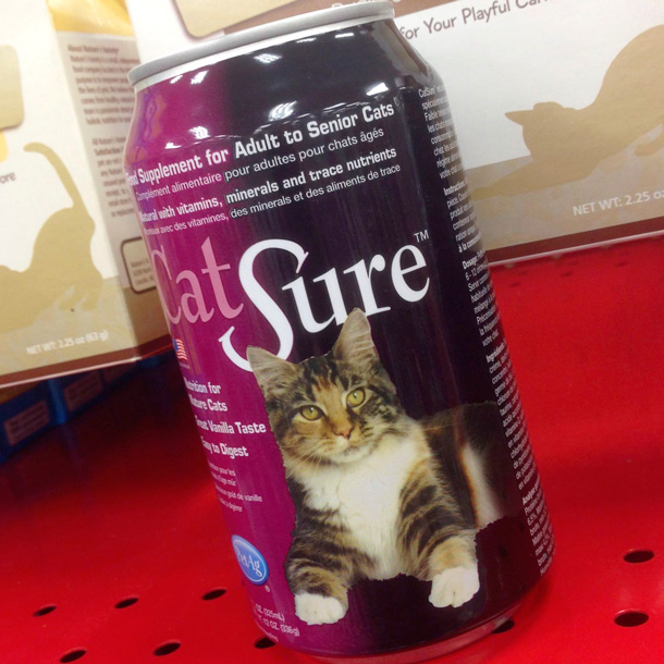 cat-sure-petco-610