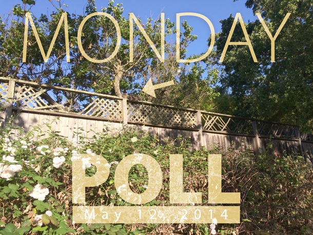 The Makeup and Beauty Blog Monday Poll for May 12, 2014