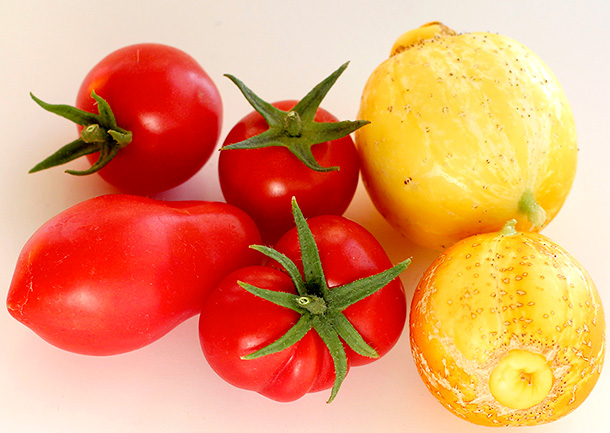 Tomatoes and Lemon Cucumbers (3)