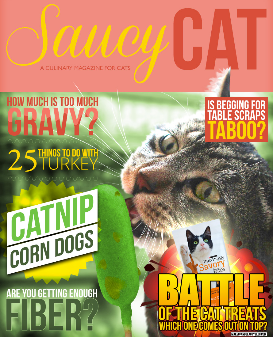 Tabs the Cat for Saucy Cat Magazine