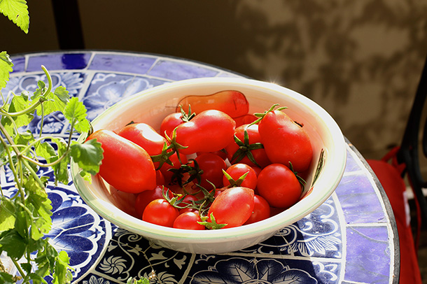 Romas and Cherry Tomatoes (2)