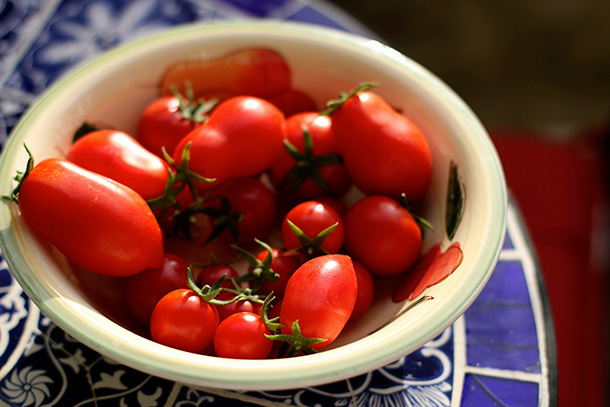 Romas and Cherry Tomatoes (3)