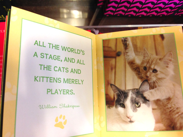 smitten-with-kittens-book-3