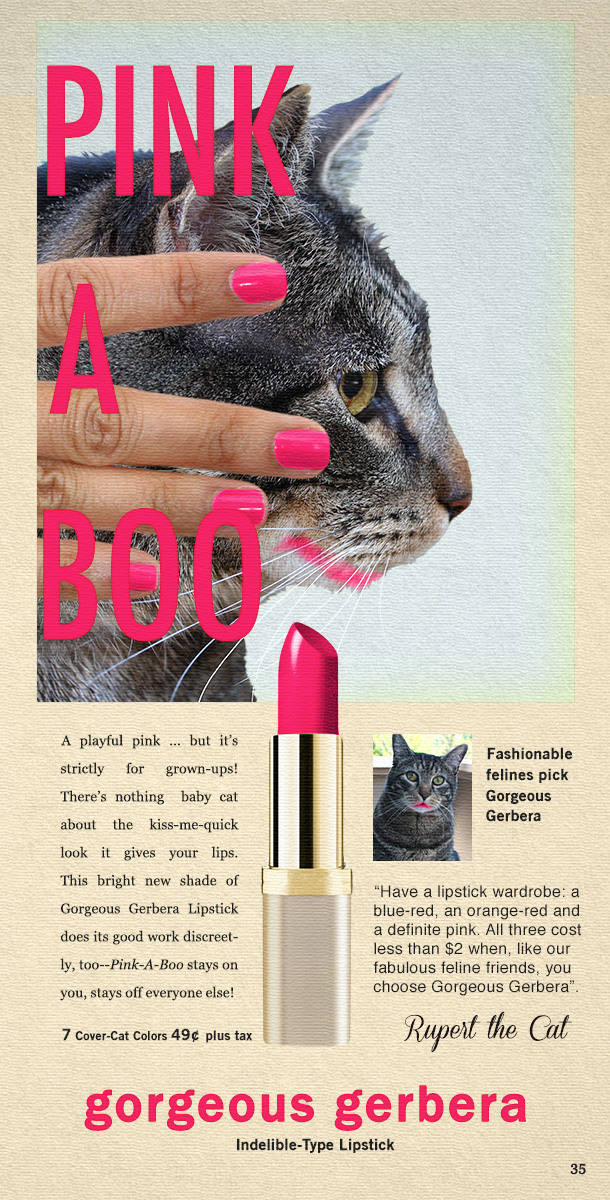 Tabs the Cat for Gorgeous Gerbera Lipstick
