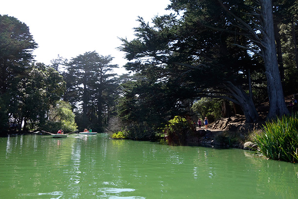 Paddle boating on Stow Lake in San Francisco's Golden Gate Park