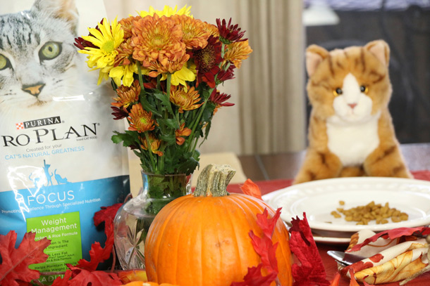 tabs-purina-thanksgiving-1