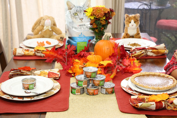 tabs-purina-thanksgiving-8