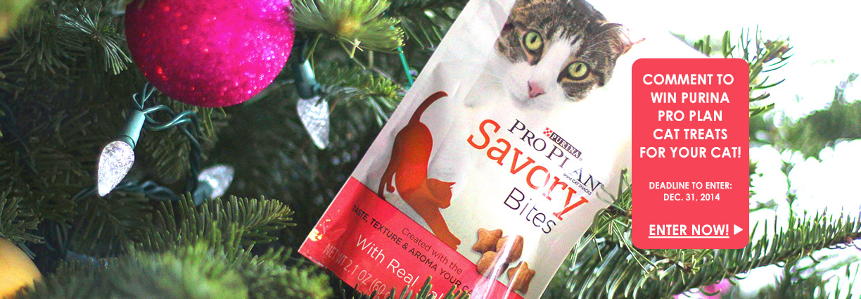 Win Purina Pro Plan Cat Treats
