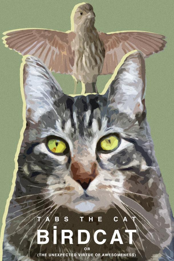Tabs the Cat, Birdcat