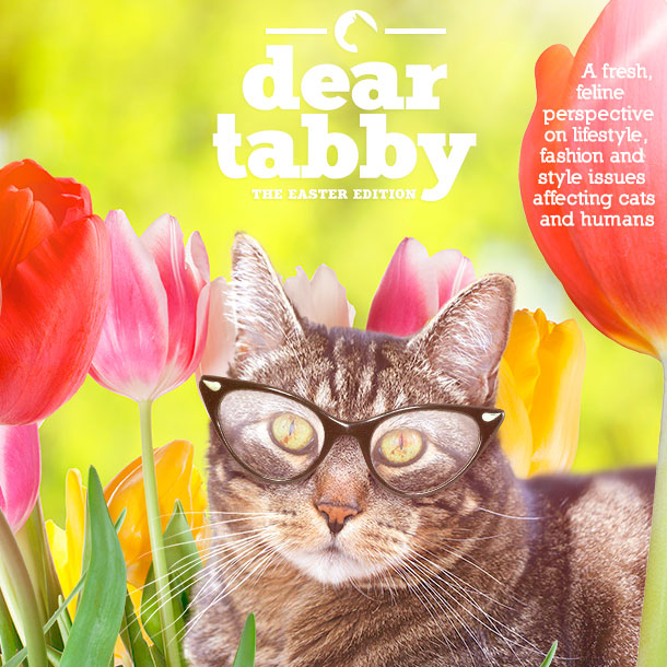 Dear Tabby: The Easter Edition