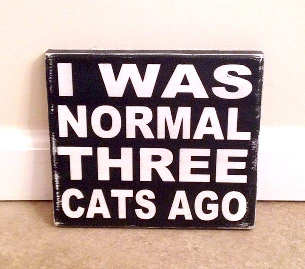 i-was-normal-three-cats-ago
