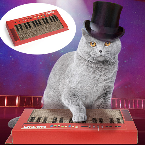 keyboard cat scratcher
