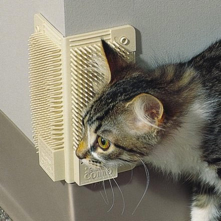 kitty-corner-comb