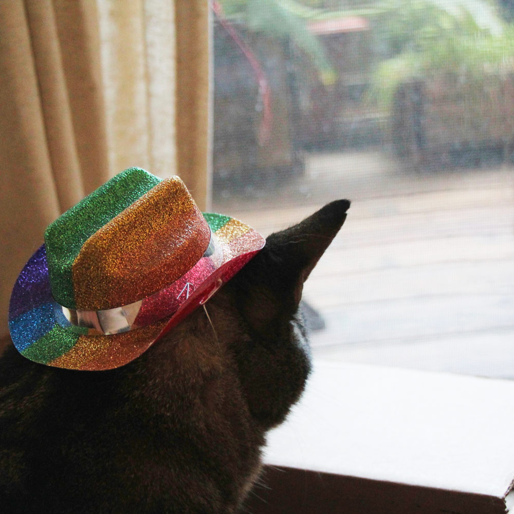 1-tabs-rainbow-kitty-hat